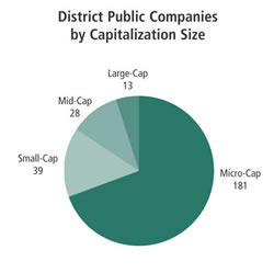 Chart: District Public Companies by Capitalization Size