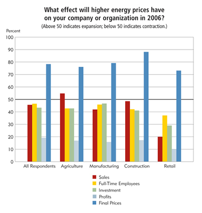 Chart: What effect will higher energy prices have on your company or organization in 2006?