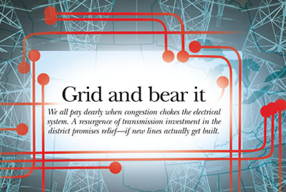 Image: Grid and bear it