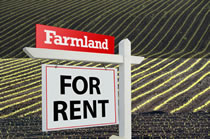 Image: Farmland for Rent Sign